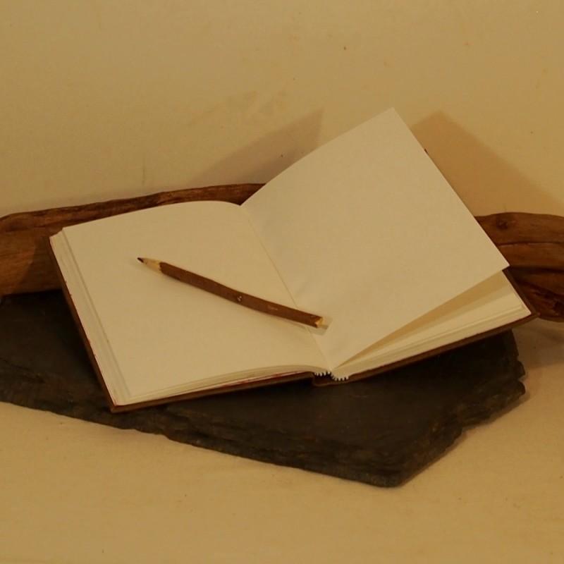 Livre Ancien En Cuir Livre D Or Carnet D Ecriture De Dessin