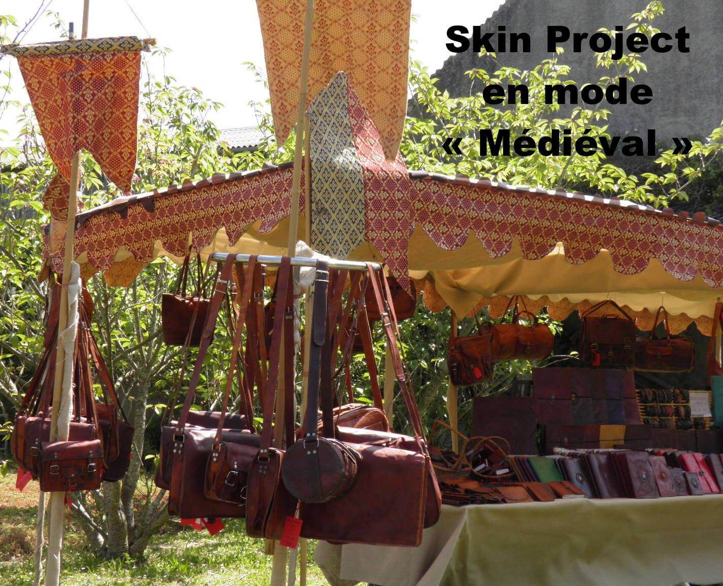 STAND SKIN PROJECT A PROVINS
